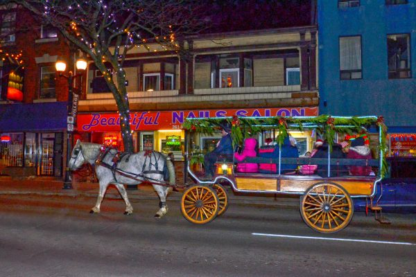 2018 Victorian Night. Horse drawn carriage taking a group of people for a ride
