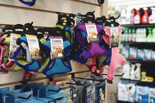 Image of dog collars at Live Right Pet Supplies