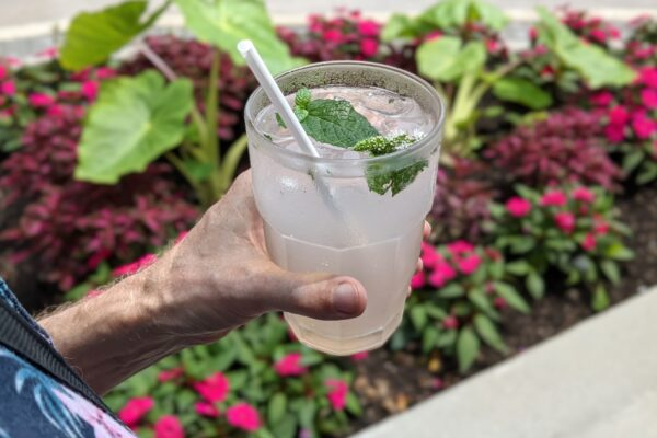 Image of Lemonade with Gardens in the Background